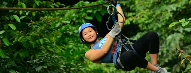 Rainforest Zip-Line Tour